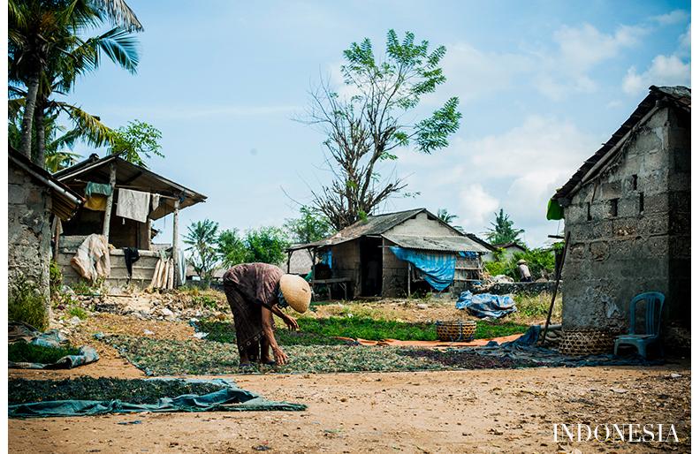 Indonesia matkakuva